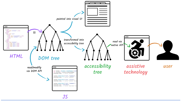 The relationship between the DOM tree, HTML, and JavaScript. This is posted to the browser and accessibility tree for assistive technology and user.